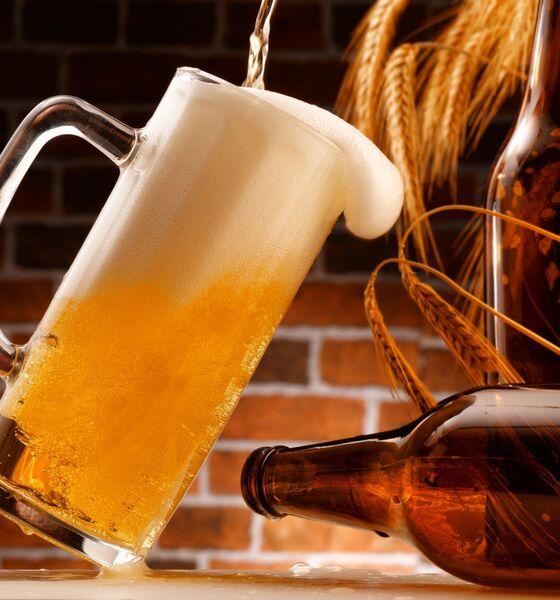 Smagen af øl