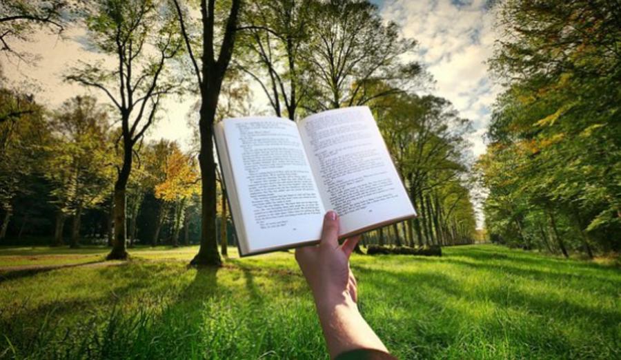 Hånd der holder bog med naturen i baggrunden